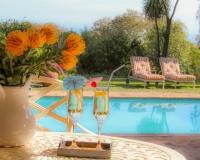 swimmingpool from patio apartment 1  - Villa Vista